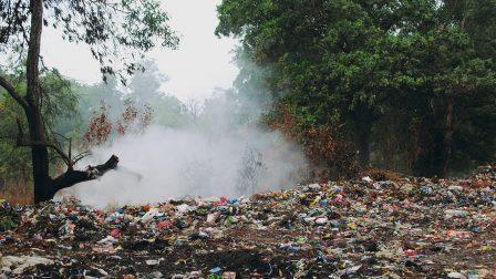 illegális hulladék az erdőben