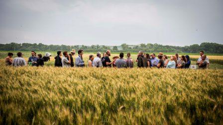 kiemelt Mit hoz a jövő_ Trendek és kihívások a fenntartható mezőgazdaságban_ÖMKi (2)