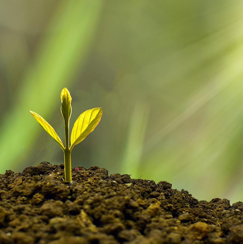 Áder János: A bankok nélkül nem fog menni a gazdaság zöldítése