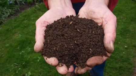 Mi fán terem a komposztálás?