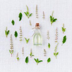 aroma-906137_1920 (1)