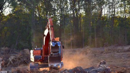 deforestation-2833687_1920