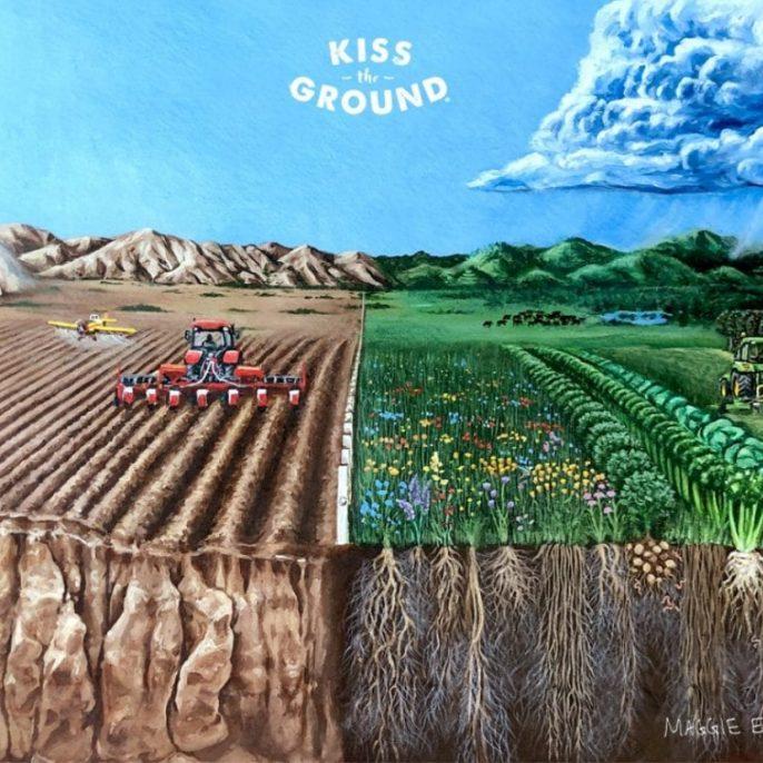 Kiss the ground film borító