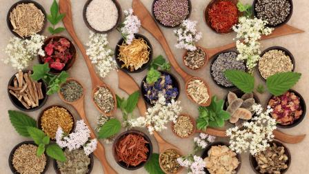 """""""Egységben a természettel, egyensúlyban önmagaddal"""" – Interjú Dr. Ferenczi Adriennel"""