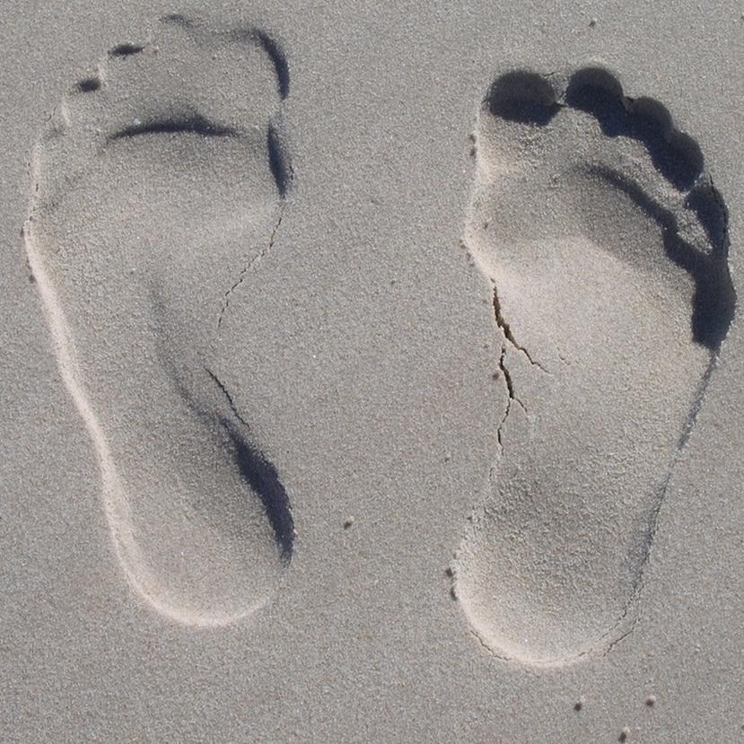 Tudod, mekkora az ökológiai lábnyomod?