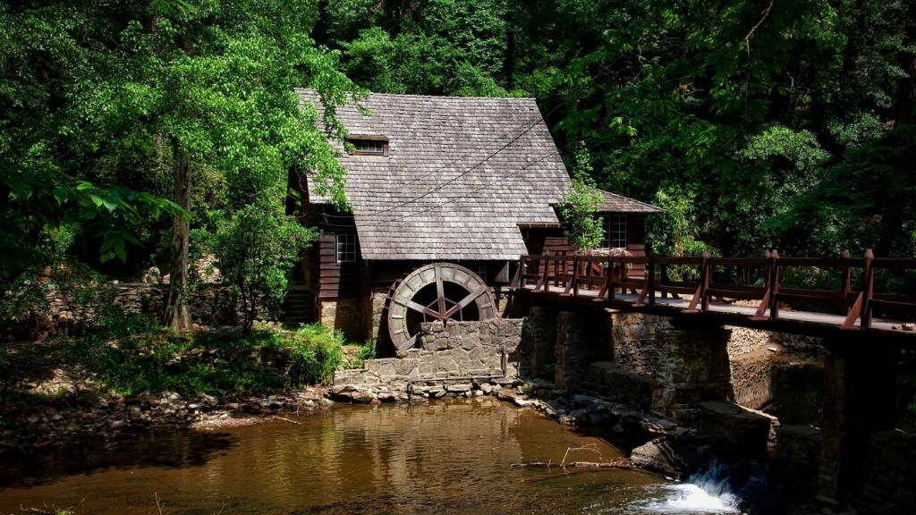 erdő víz épület híd