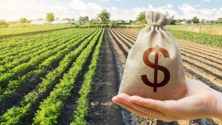 földvásárlás