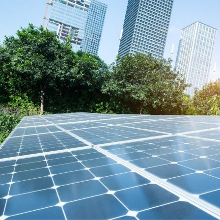 Rekord éve volt a megújulóknak 2020