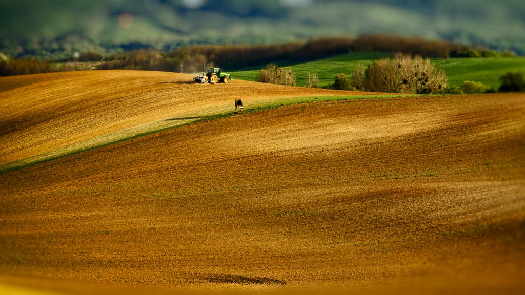 szántóföld traktor