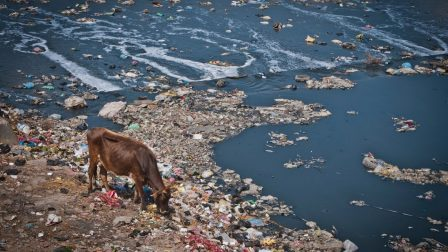 folyószennyezés
