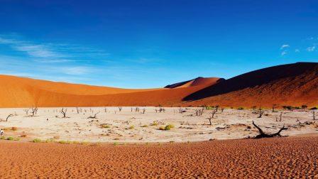 sivatagosodás
