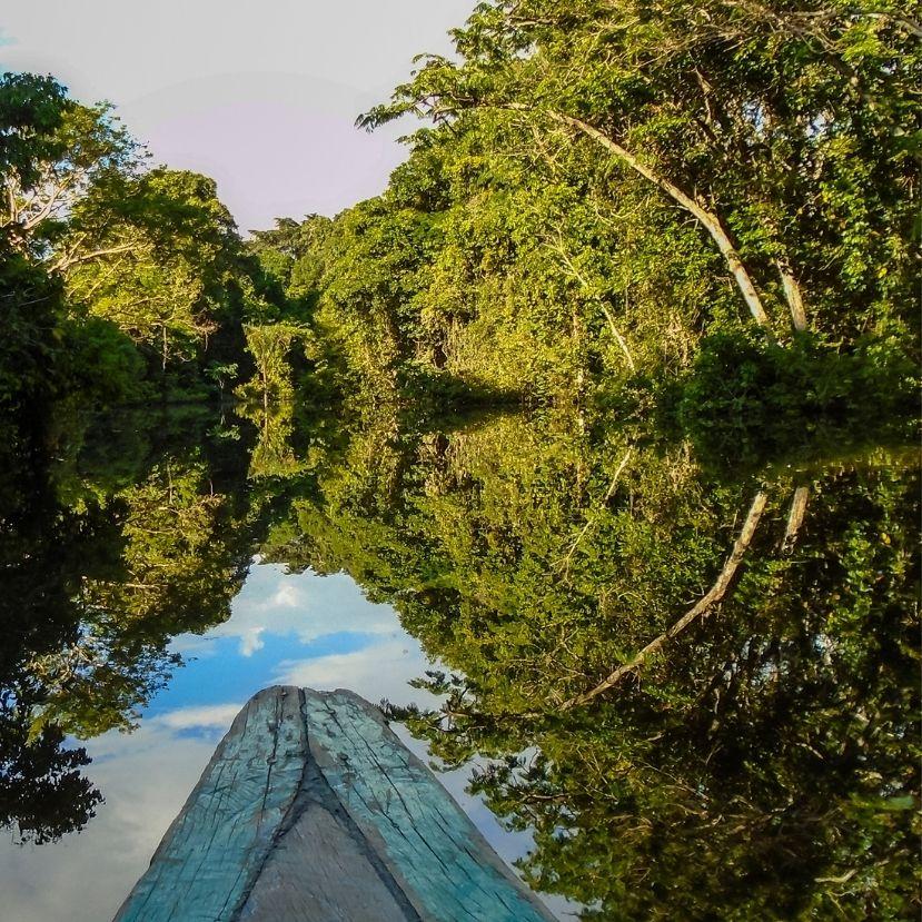 Példát kellene vennünk az esőerdő őslakosairól