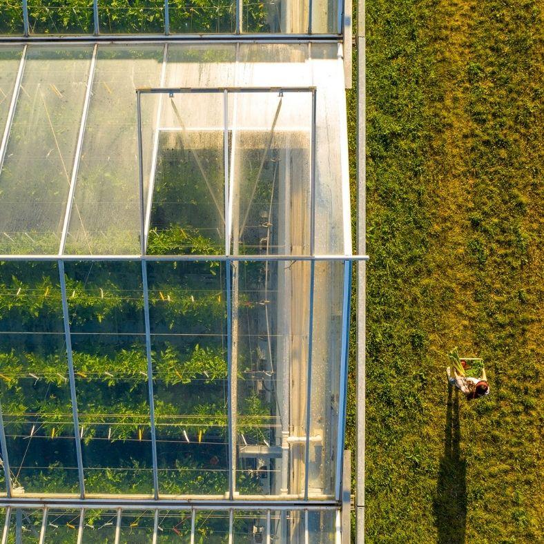 A fenntarthatósági fordulat óriási lehetőség a magyar vállalkozásoknak