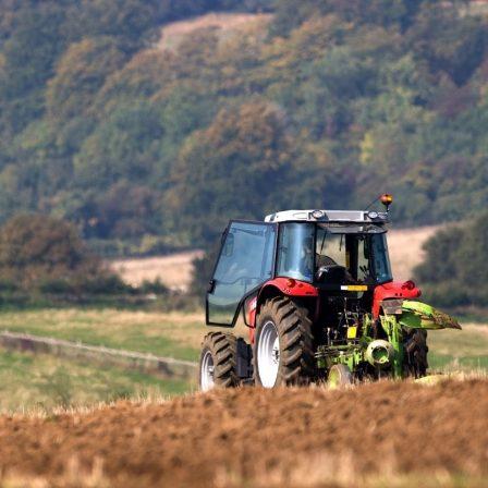 Az alkalmazkodás a kulcsszó a mezőgazdaságban