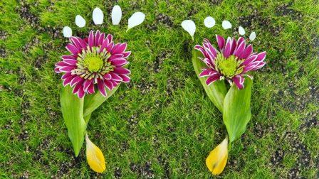 Muszáj lesz mérsékelnünk az ökológiai lábnyomunkat