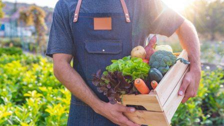 önellátó mezőgazdaság(1)