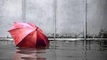 árvíz_illusztráció