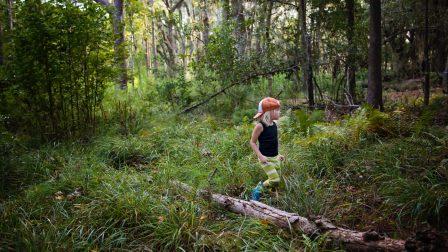gyerek-erdő