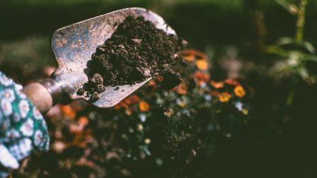kertészkedés(1)