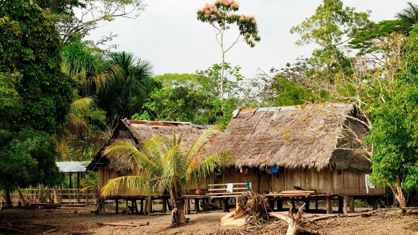 Műholdas technológia segíthet az őslakosoknak erdeik megvédésében