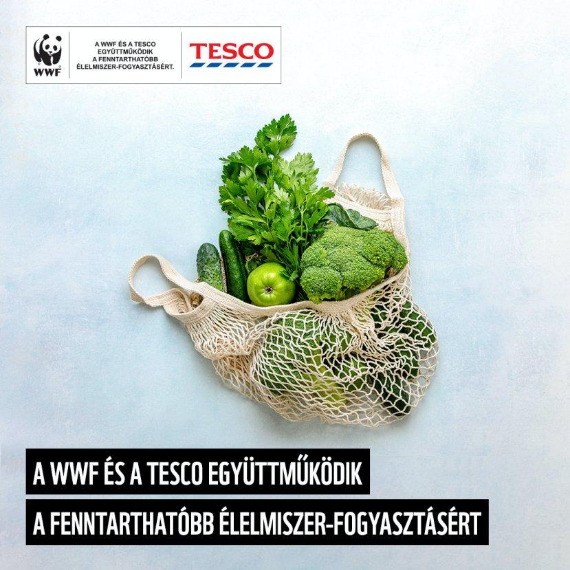A Tesco és a WWF új együttműködése a megfizethető és fenntartható élelmiszer-fogyasztást támogatja