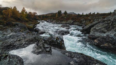 1400×788-pexels-norvegia