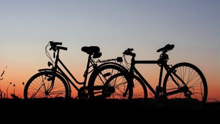 1400×788-pexels-biciklik