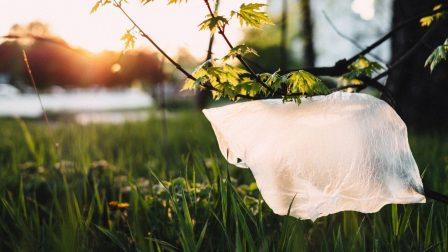 bioműanyag