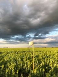 farmr kroo időjárás állomás b1