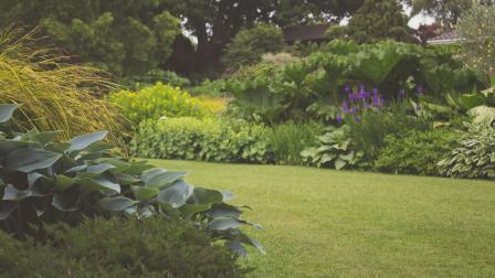 Ősszel a kertben: gyeptrágyázás és egyéb munkálatok