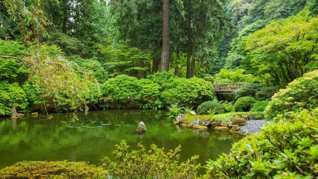 a klímaszorongás nem jellemző, ha egy üde zöld zen kertben járunk