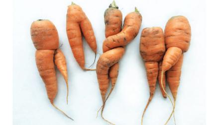 Íme a 6 legjobb módszer, amivel valóban csökkenthető az élelmiszer pazarlás